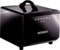 12v-incar-microwave