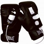 Everlast Wii Boxing Gloves >> Boxing Silly