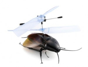 rc-flying-cockroach