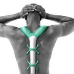 VertaBrate Back Massager » Back Buddy