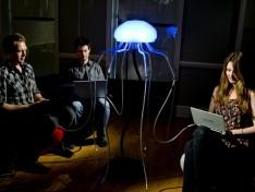 Jelly Fish Broadband Router