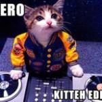 DJ Hero: Too Expensive